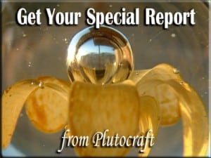 Special Report from Plutocraft