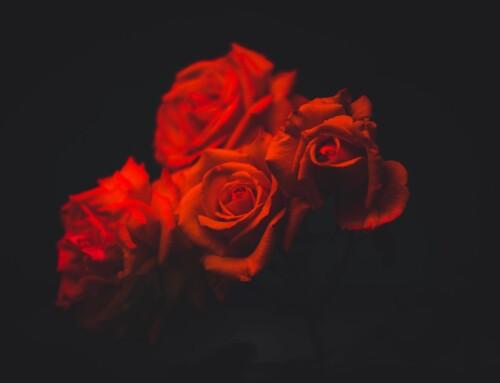 Secrets Of Love Spells